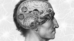 Как научить мозг генерировать идеи