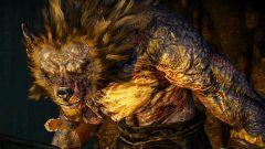 Ведьмак 3: как пройти квест в волчьей шкуре?
