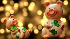 Как и где встречать Новый год 2019, чтобы угодить Желтой Земляной Свинье