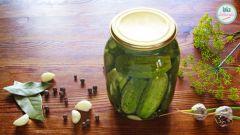Огурцы консервированные: пошаговые рецепты с фото для легкого приготовления