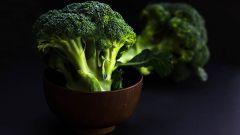 Калорийность и полезные свойства брокколи