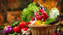 Горячие блюда из овощей: пошаговые рецепты с фото для легкого приготовления