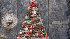 Несколько занимательных фактов о новогодней елке