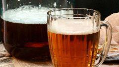 Светлое домашнее пиво: пошаговые рецепты с фото для легкого приготовления