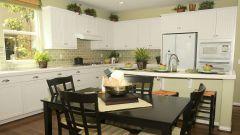 Топ-5 неприхотливых и полезных комнатных растений для кухни
