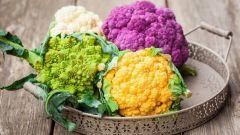 Цветная капуста в панировочных сухарях: пошаговые рецепты с фото для легкого приготовления