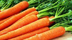 Морковь - сладкое лекарство