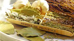 Прованские травы: пошаговые рецепты с фото для легкого приготовления