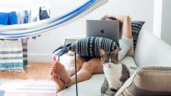 Как концентрироваться на задаче, работая дома
