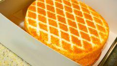 Медовый торт: пошаговые рецепты с фото для легкого приготовления