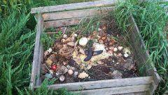 Можно ли яблоки кидать в компостную яму
