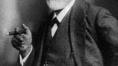 Зигмунд Фрейд: биография, творчество, карьера, личная жизнь