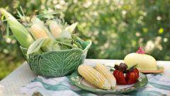 Блюда со свежими зернами кукурузы: пошаговые рецепты с фото для легкого приготовления