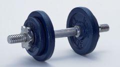 Можно ли заниматься каждый день на разные группы мышц