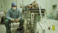 Имеют ли право врачи оперировать после дежурства