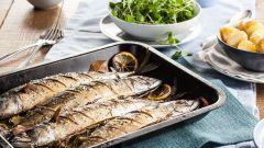 Как приготовить скумбрию: пошаговые рецепты с фото для легкого приготовления