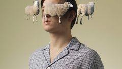 Надоело считать овец. Что делать с бессонницей?