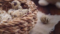Основные полезные свойства перепелиных яиц