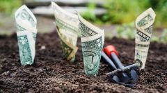 Как привлечь деньги по фен-шуй: 5 советов