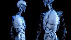 5 тревожных сигналов от организма, на которые важно обратить внимание