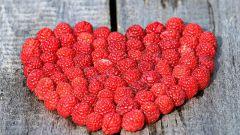 Топ-7 продуктов, защищающих от рака