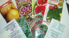 На что стоит обратить внимание при выборе семян