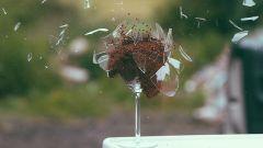 Что означает разбившаяся посуда