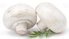 Грибы: мясо или овощи