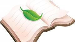 Как написать сочинение ЕГЭ по тексту Л.Н. Андреева «Из самовара пар валил, как из паровоза…»