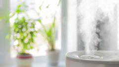 Как увлажнить сухой воздух без помощи увлажнителя