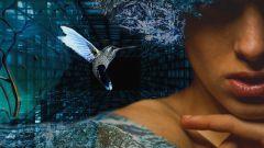 Женщинам каких знаков Зодиака не везет в любви и почему