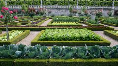 Как создать французский огород своими руками
