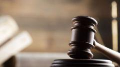 Можно ли неплательщика по кредитам, находящегося в розыске, лишить родительских прав