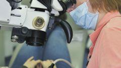 Лечение кисты на зубах с помощью микроскопа и лазера