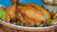 Как приготовить курицу с цветной капустой