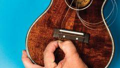 На каком музыкальном инструменте проще всего научится играть