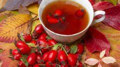 Шиповника плоды: инструкция по применению, показания, цена