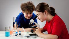 Как выбрать хороший микроскоп для школьника и не переплатить