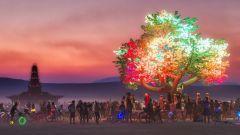 Что нужно знать перед поездкой на Burning Man