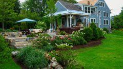 Садоводство как отдых и хобби
