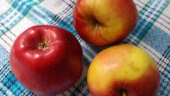 Что необычного можно приготовить из яблок