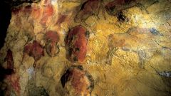 Альтамира: описание, история, экскурсии, точный адрес