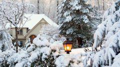 Сад зимой: особенности ландшафтного дизайна