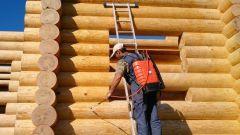 Строим рубленый дом: когда и чем надо пропитать стены