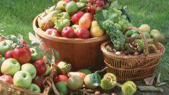 Как снизить количество нитратов в продуктах