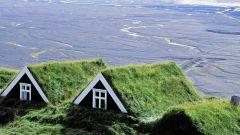 Зеленые крыши: виды, преимущества, недостатки