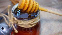 Гречишный мед: лечебные свойства и противопоказания