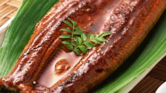 Рыба угорь: приготовление и полезные свойства