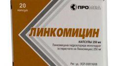 Линкомицин: инструкция по применению, показания, цена