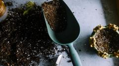 Можно ли самому сделать анализ почвы?